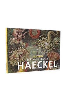 Anaconda Art Postcard Book | Haeckel