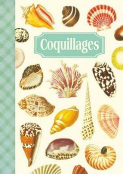 Illustrated notebook Gwenaëlle Trolez Créations - Cahier des Coquillages