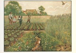 Postcard | Cornelis Jetses, Het volle leven: 'Junimorgen in de bouwlanden'