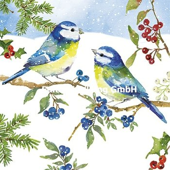 Carola Pabst Postcard Christmas | Pimpelmees in the sneeuw