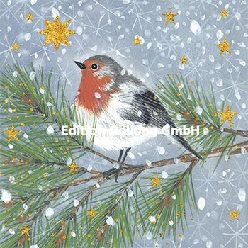 Kerstin Heß Postcard Christmas | Bird with stars