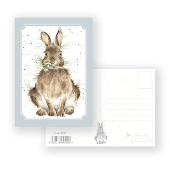 Wrendale Designs 'Daisy' Postcard