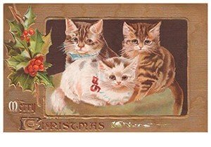 Postcard | Drie katjes (Merry christmas)
