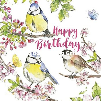Carola Pabst Postcard | Happy Birthday (Birds)