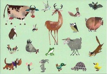 Fiep Westendorp Postcards | Allerlei dieren