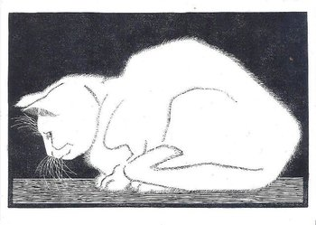 Museum Cards Postcard | M.C. Escher, White Cat (1919)
