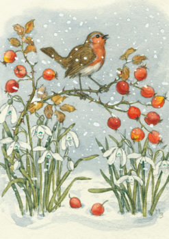 Postcard Molly Brett | Robin and Rosehips