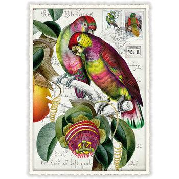 Postcard Edition Tausendschoen | PAPAGEI-PAAR
