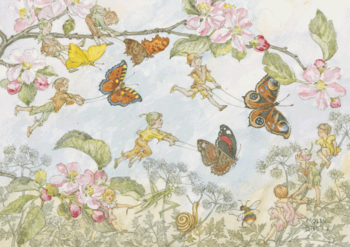 Postcard Molly Brett | The Butterfly Race