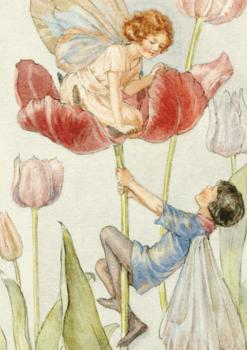 Postcard Margareth W. Tarrant | Tulip Fairies