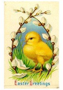 Victorian Postcard | A.N.B. - Kuikentje