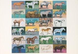 Postcard | Paul Giovanopoulos - Horse B