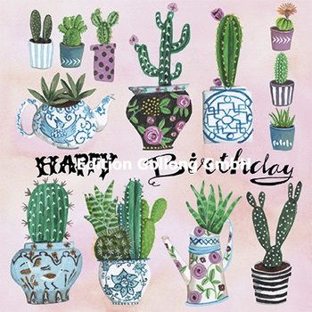 Cartita Design Postcard | Happy Birthday (Cactus)