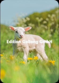 Shutterstock - Burry van den Brink Postcard   Lamb