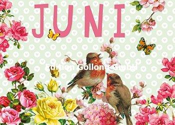 Carola Pabst Postcard   Juni (Vintage)