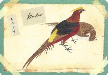 Postcard | Vogels, Philipp Franz von Siebold, Naturalis Biodiversity Center