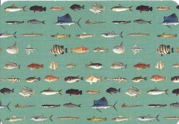 Postcard | Vissen, Philipp Franz von Siebold, Naturalis Biodiversity Center
