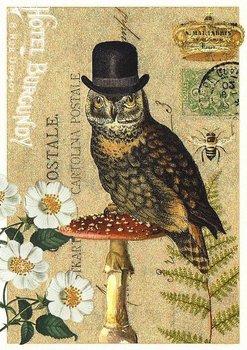 Postcard Edition Tausendschoen | Owl Hat
