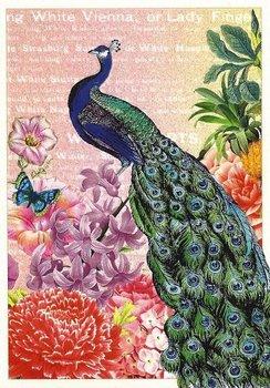 Postcard Edition Tausendschoen | Peacock