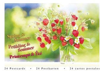 Tushita Postcard Book | Spring & Summer