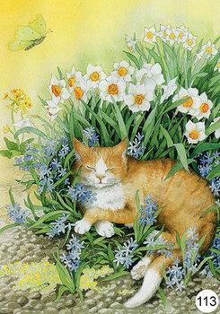 Inge Look Nr. 113 Postcard Garden | Cat