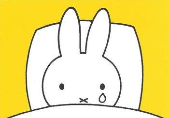 Nijntje Miffy Postcards | Nijntje huilt