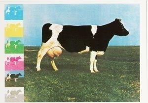 Postcard   Jan Cremer (1940) - Nationale trots