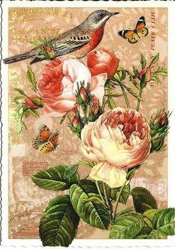 Postcard Edition Tausendschoen | Adriana Sanmartin