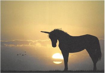 Cartweb Retro Postcard | Unicorn
