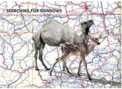 Bizarr Verlag Postcard | Searching for Rainbows