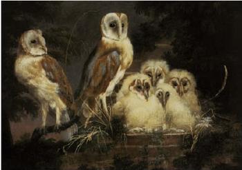 Postcard | Owls, 1765 William Tomkins