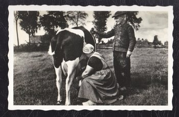 Oud Hollandse Postkaart | Melkend paartje