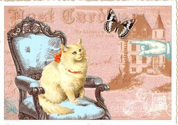 Postcard Edition Tausendschoen | Cat