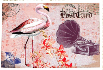 Postcard Edition Tausendschoen | Flamingo