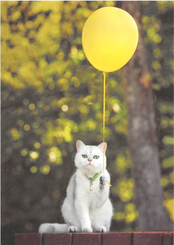 Cartweb Retro Postcard | Cat Balloon
