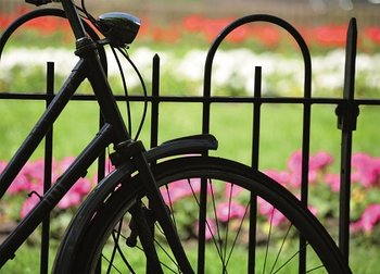The Dutch Connection Postcard | Bike and Flowers