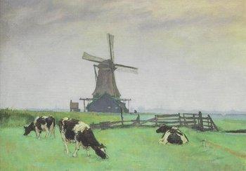 Museum Cards Postcard | Zicht op molen Het Prinsenhof te Wsetzaan, 1943