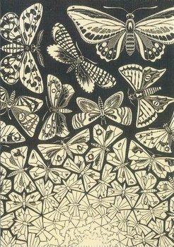 Museum Cards Postcard | M.C. Escher, Butterflies (1950)