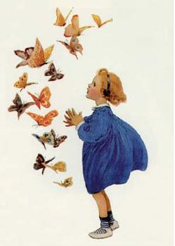 Postcard   Beautiful Butterflies