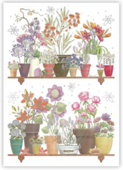 Postcard | Flower Pots