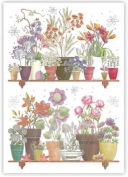 Postcard | Flower Pots