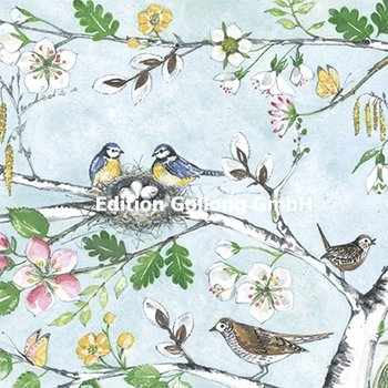 Kerstin Heß Postcard | Birds with spring blossoms