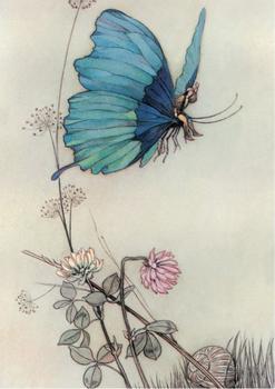 Postcard | Tom Thumb, 1913, Warwick Goble