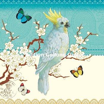 Kathrin Stockebrand Postkarte | Kakadu (Vintage)