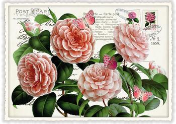 Postcard Edition Tausendschoen | Rosen