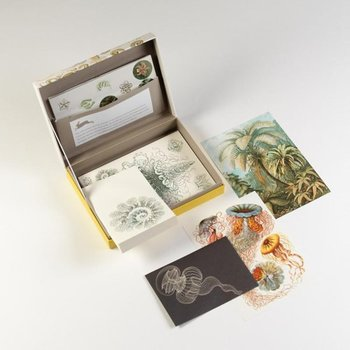 Pepin Press - Letter Writing Sets | Art Forms in Nature