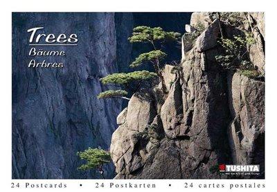 Tushita Postcard Book | Trees