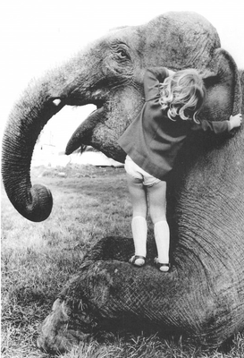 Postcard Elephant | Friendship