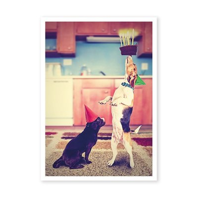 Postcard Kiek | Birthday Dogs