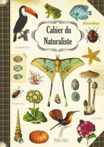 Illustrated notebook Gwenaëlle Trolez Créations - Cahier du Naturaliste